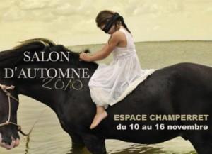 Salon d'Automne 2010 - Paris - Dominique Rivaux