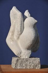 Oiseau - oiseau colombe - symbole de la paix - Dominique Rivaux