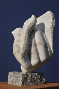 oiseau colombe - symbole de la paix - Dominique Rivaux