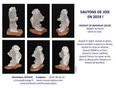 Voeux 2019 - Dominique Rivaux